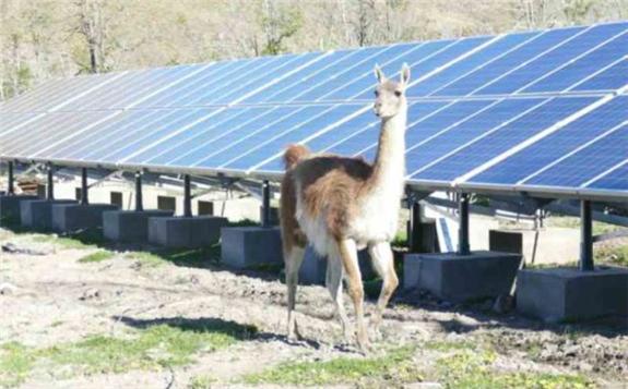 Patagonia National Park solar installation. Image credit: SyR Energía
