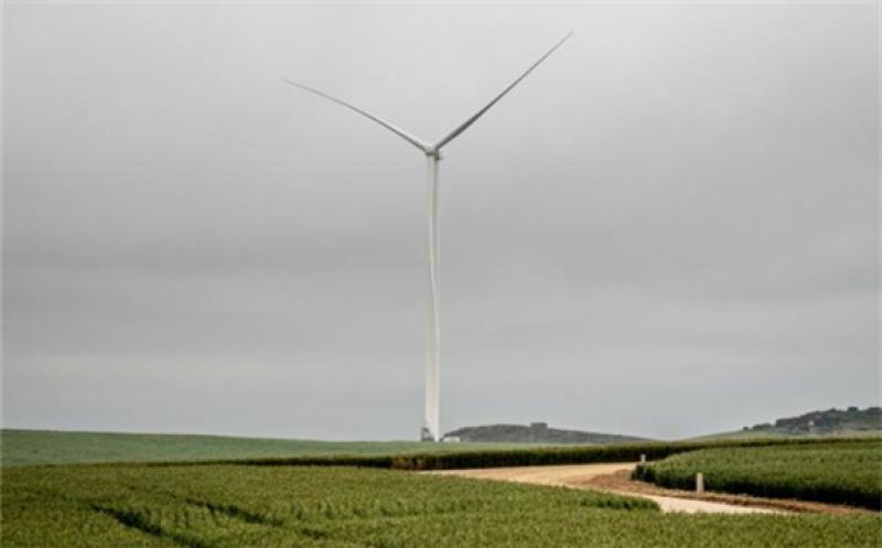 Excelsior Wind Farm Connects to South Africa's Power Grid