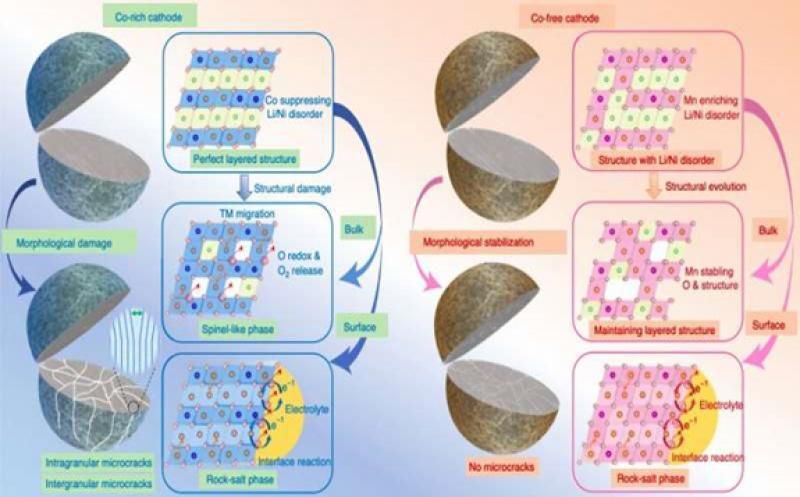 Figure summarizing structural evolution mechanisms for Co-rich and Co-free cathodes. Credit: Liu et al.